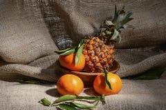 新鲜的成熟果子蜜桔和菠萝与绿色叶子在粗麻布一个遮荫机盖  库存照片