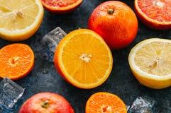 新鲜的成熟柑橘水果的混合当血橙,普通话, le 免版税库存照片
