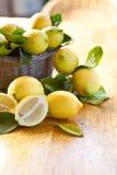 新鲜的成熟柠檬 库存图片