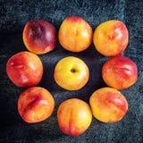 新鲜的成熟油桃桃子果子,播种土气背景 顶视图 免版税库存照片