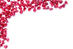 新鲜的成熟石榴种子边界  图库摄影