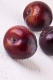 新鲜的成熟红色李子 免版税库存照片