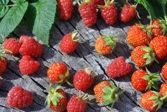 新鲜的成熟红色自然草莓和莓与叶子混合了 免版税图库摄影