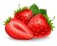 新鲜的成熟草莓 库存照片