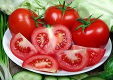 新鲜的成熟菜-蕃茄、圆白菜、葱和黄瓜 免版税库存图片