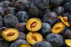 新鲜的成熟蓝色李子关闭在农夫市场上 免版税库存图片