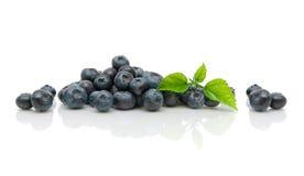 新鲜的成熟蓝莓和绿色叶子在白色背景 库存照片