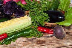 新鲜的成熟蔬菜 图库摄影