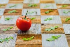 新鲜的成熟蕃茄用水滴下,蓬蒿叶子,与片断,不同的品种的表面mosaik板当棋盘 免版税库存图片