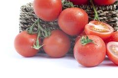 新鲜的成熟蕃茄蔬菜藤 免版税库存照片