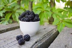 新鲜的成熟黑莓 免版税库存照片
