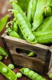 新鲜的成熟绿豆 图库摄影