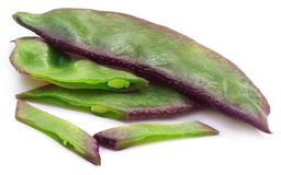 新鲜的扁豆或印第安豆 库存照片