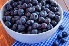 新鲜的摘的有机蓝莓 免版税库存照片