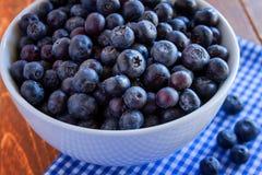 新鲜的摘的有机蓝莓 库存照片