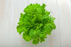 新鲜的散叶莴苣 免版税库存图片