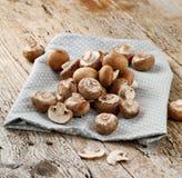 新鲜的整个白色未张开的蘑菇蘑菇特写镜头 免版税库存图片