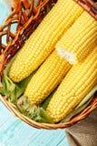 新鲜的新鲜玉米篮子,剥壳 文本的空间 库存照片