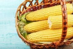 新鲜的新鲜玉米篮子,剥壳 文本的空间 库存图片