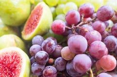 新鲜的无花果和葡萄 库存图片