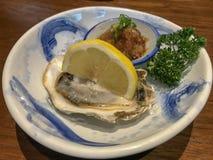 新鲜的日本牡蛎 库存照片