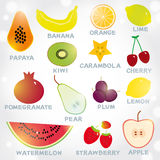 新鲜的明亮的水多的果子在白色背景设置了 重点 库存照片