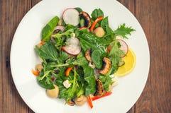 新鲜的春天沙拉用萝卜,美津浓,蘑菇烤了, Adygei乳酪,菠菜,甜椒,柠檬,玉米 木背景 库存照片