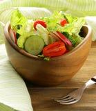 新鲜的春天沙拉用蕃茄 库存照片