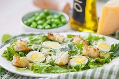新鲜的春天沙拉用莴苣,鸡蛋,乳酪,油煎方型小面包片,绿色 免版税库存照片