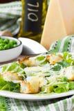 新鲜的春天沙拉用莴苣,鸡蛋,乳酪,油煎方型小面包片,绿色 免版税库存图片