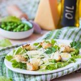 新鲜的春天沙拉用莴苣,鸡蛋,乳酪,油煎方型小面包片,绿色 免版税图库摄影