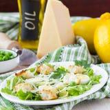 新鲜的春天沙拉用莴苣,鸡蛋,乳酪,油煎方型小面包片,绿色 库存图片