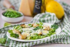 新鲜的春天沙拉用莴苣,鸡蛋,乳酪,油煎方型小面包片,绿色 库存照片