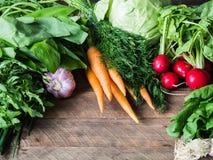 新鲜的春天菜和草本-红萝卜,ramson,萝卜,莳萝,大蒜,芝麻菜,圆白菜,在木背景的大葱 免版税图库摄影