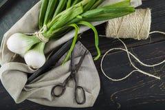 新鲜的春天葱和老剪刀 库存照片