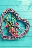 新鲜的春天黄色郁金香开花和装饰心脏  库存图片