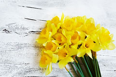 新鲜的春天水仙花束在白色木backg开花 免版税库存照片