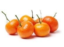 新鲜的普通话柑橘 免版税库存图片