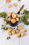 新鲜的有机土豆和麝香草在葡萄酒金属化罐 免版税库存照片