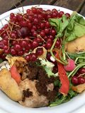 新鲜的有机垃圾大角度看法用在一个小白色碗的红浆果回收的 库存照片