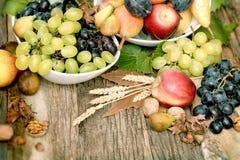 新鲜的有机季节性果子,秋天果子 免版税图库摄影