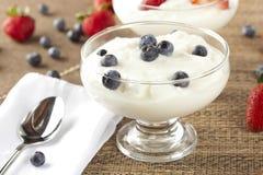新鲜的有机希腊酸奶用蓝莓 免版税库存图片