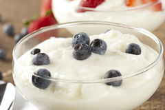 新鲜的有机希腊酸奶用蓝莓 免版税库存照片