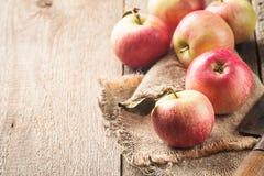 新鲜的有机成熟苹果 库存图片