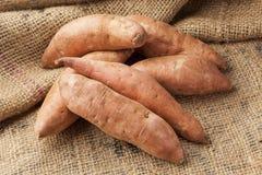 新鲜的有机橙色白薯 库存照片