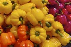 新鲜的有机甜椒在温哥华的Grandville海岛市场上做充满活力的颜色 库存照片