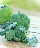 新鲜的有机硬花甘蓝(brocolli) 免版税图库摄影