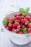 新鲜的有机草莓 免版税图库摄影