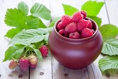新鲜的有机莓 免版税图库摄影