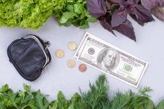 新鲜的有机菜和金钱 免版税库存图片